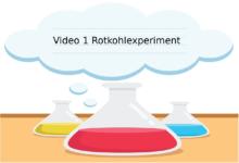 Rotkohlexperiment